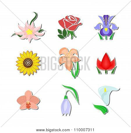 The Flowers Set