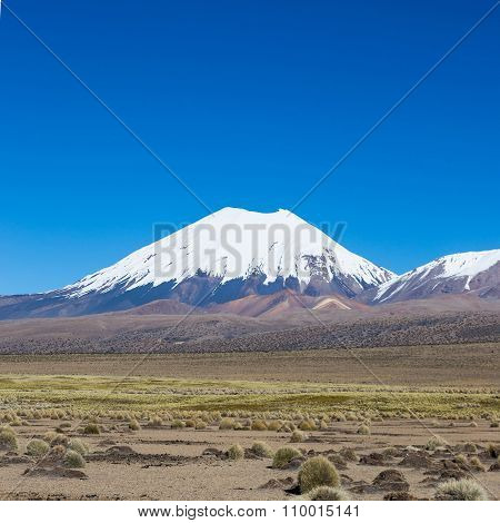 Parinacota Volcano. High Andean Landscape In The Andes.