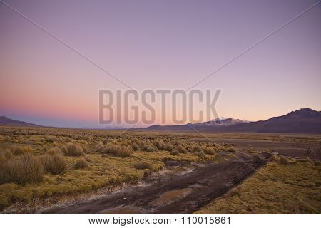 Sunrise In The Andes Mountains. Natural Park Of Sajama, Bolivia.