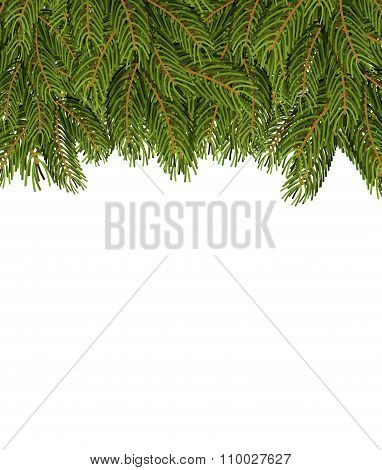 Fir Branches On White Sheet. Christmas Background For Congratulations. Tree Tree And Place For Your