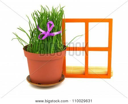 Composition With Grass In The Flowerpot And Orange Wooden Window