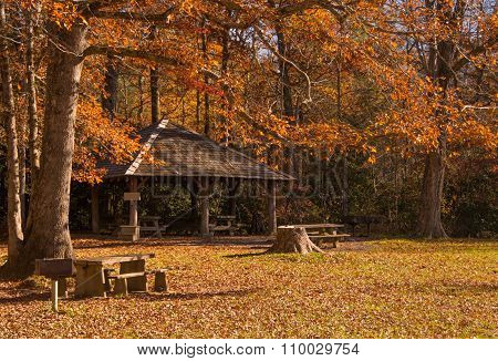 Autumn Shelter