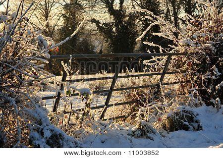 Old farmland gate