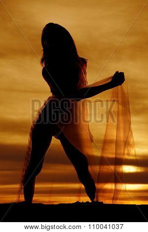 Silhouette Of A Woman In Lingerie Nightgown To Side