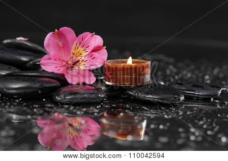 Beautiful pink orchid with candle and therapy stones