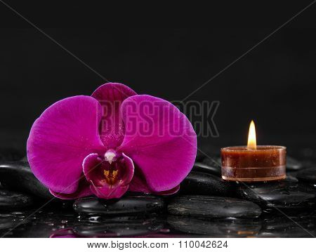 Macro of red orchid with candle and therapy stones