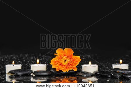 Lying down ranunculus with four white candle and therapy stones