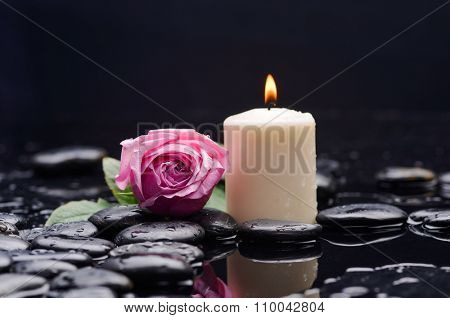 pink rose with white candle and therapy stones