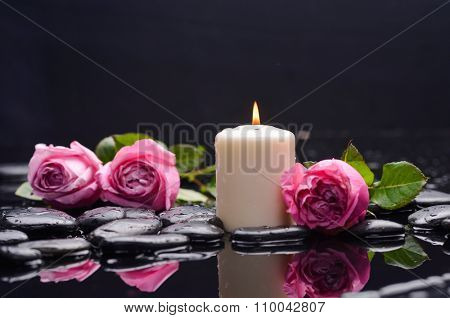 three pink rose with white candle on wet and therapy stones