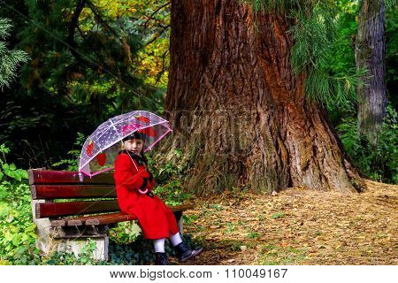 Cute Little Girl With Umbrella Sitting Under The Big Pinetree