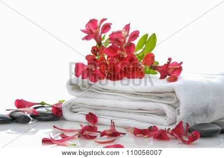 Branch red orchid with black stones on towel
