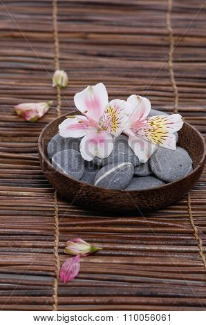 White orchid with gray stones in wooden bowl on mat
