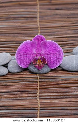 Pink orchid with gray stones on bamboo mat