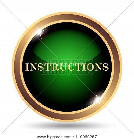 Gold and Green Instructions Icon