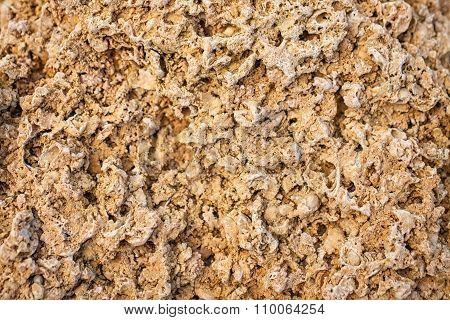 Texture Of Limestone Blocks