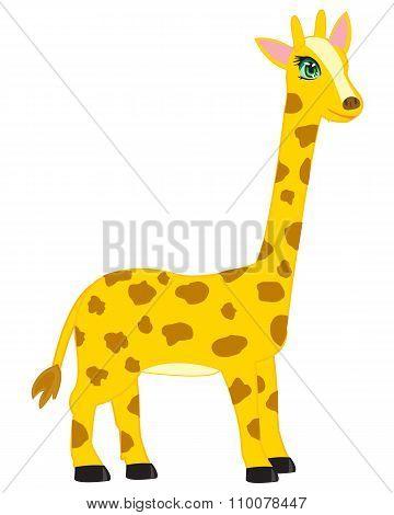 Cartoon animal giraffe