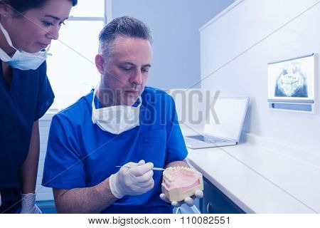 Dentist and assistant studying model of mouth at the dental clinic