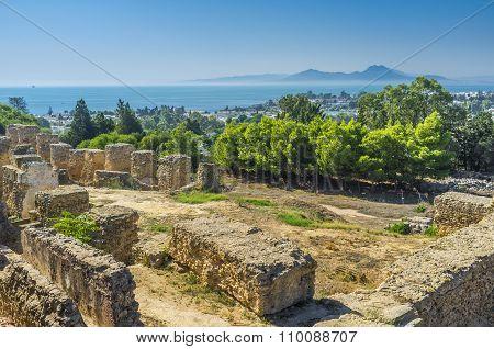 The Coast Of Carthage