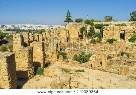 The Ruins Of The Walls