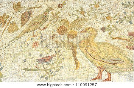 The Mosaic Birds