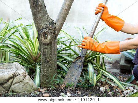 Woman Doing A Gardening Use Shovel
