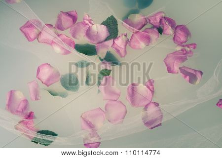 rose petals and leaves float on the milky water with  white tulle over