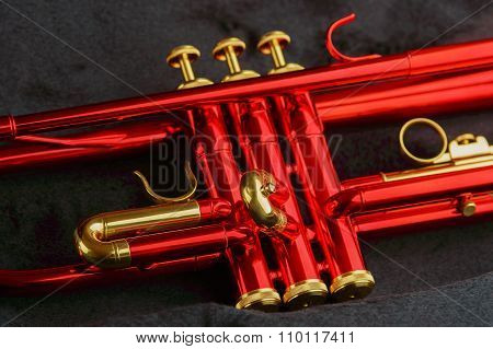 Red Brass Trumpet