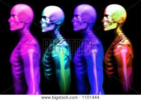 Huesos de hombre