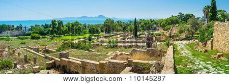 The Panorama Of Roman Villas