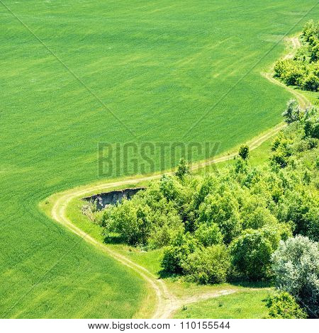 Landscape With Green Grass Field