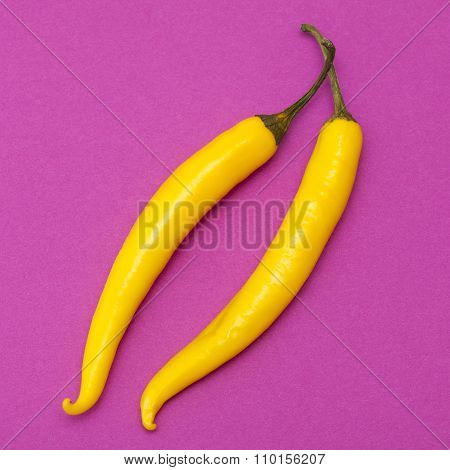 Yellow  Chili Pepper