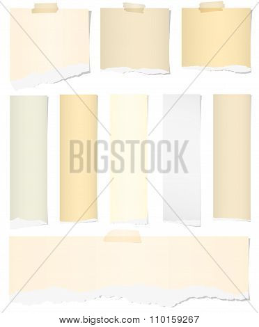 Set of various colors torn note papers with adhesive tape on white background