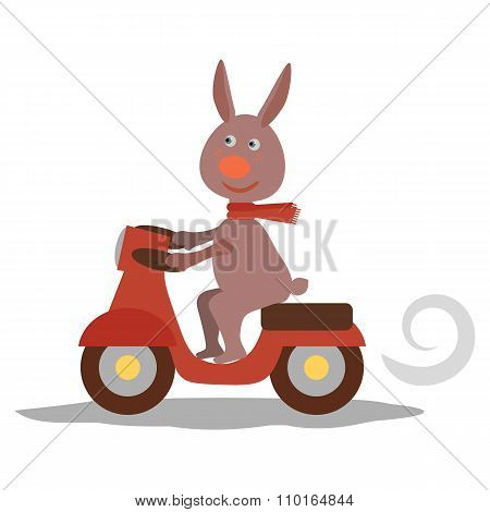 cute hare with scarf on transport. Vecor