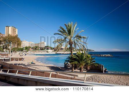 The Coastline Street Of Monaco