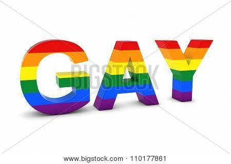 Gay Rainbow Flag 3D Text Isolated On White With Shadows