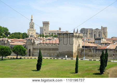 Cathedral Notre-Dame des Doms of Avignon