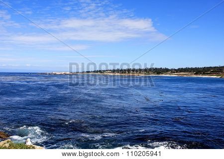 17 Mile Drive is a scenic road through Pebble Beach and Pacific Grove, California, USA