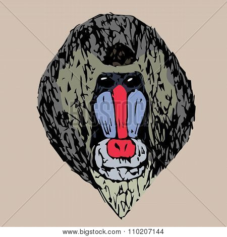 The Head Of A Young Daboon Mandrill