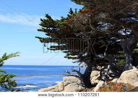 Ocean view at 17 Mile Drive, Pebble Beach California