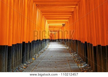 Fushimi Inari Shrine Torii temple in kyoto Japan