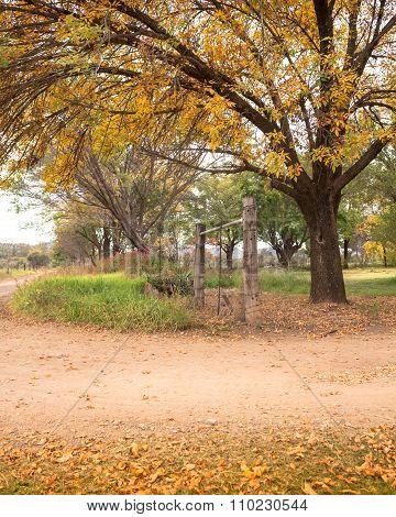 Autumn Sundappled Gravel Road Farm Entrance
