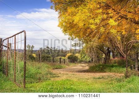 Autum Sundappled Gravel Road With Gate Open
