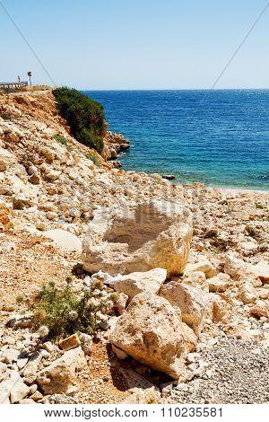 Asia In Thurkey Antalya Lycia  Near The Nature