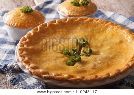 Freshly Baked Chicken Pot Pie In The Baking Dish Close Up. Horizontal