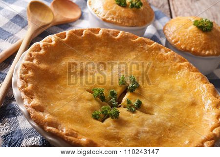 Big Chicken Pot Pie In The Baking Dish Close Up. Horizontal