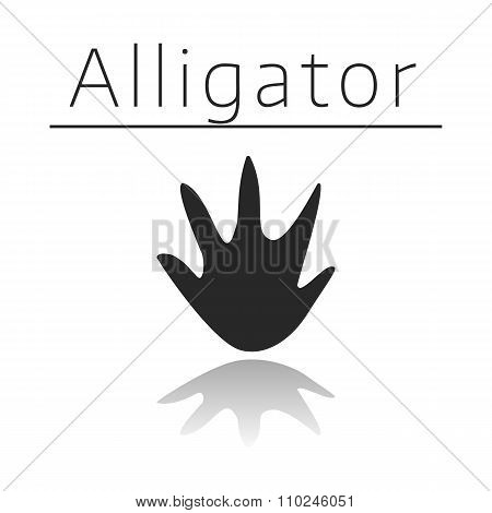 Alligator animal track