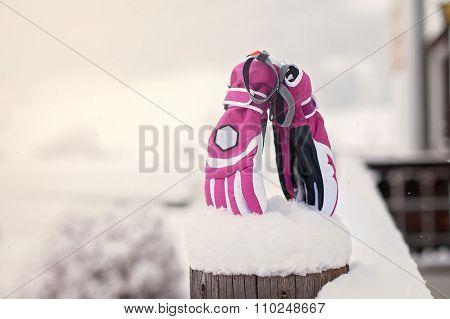 Winter Snow Gloves