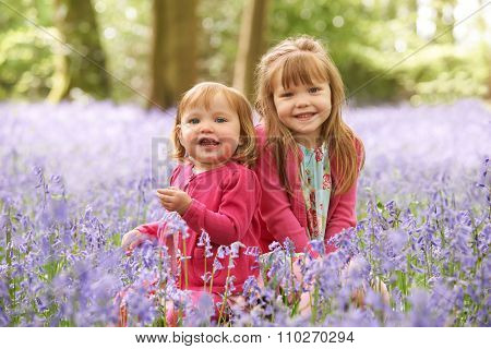 Two Girls Sitting In Bluebell Woods Together