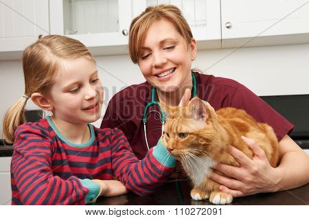 Girl Taking Cat To Vet To Be Examined