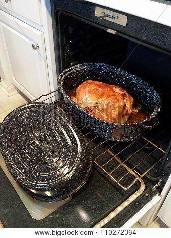 Thanksgiving turkey in old pan